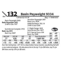 Basin Payweight 9334