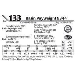 Basin Payweight 9344