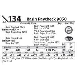 Basin Paycheck 9050
