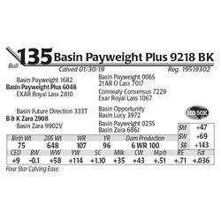 Basin Payweight Plus 9218 BK