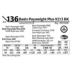 Basin Payweight Plus 9213 BK