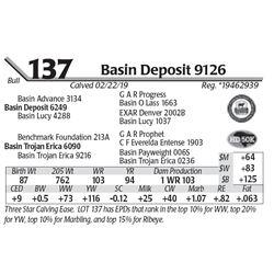 Basin Deposit 9126
