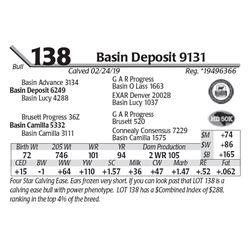 Basin Deposit 9131