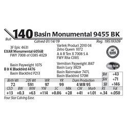 Basin Monumental 9455 BK