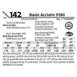 Basin Acclaim 9180