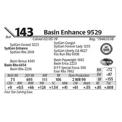 Basin Enhance 9529