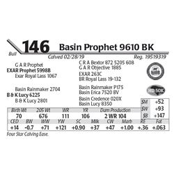 Basin Prophet 9610 BK