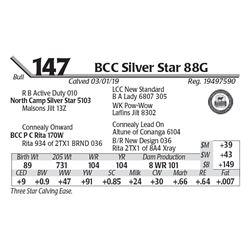 BCC Silver Star 88G