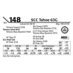SCC Tahoe 63G