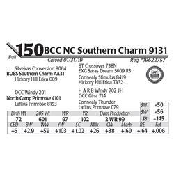 BCC NC Southern Charm 9131