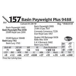 Basin Payweight Plus 9488