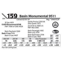 Basin Monumental 9511