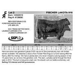 FISCHER LAKOTA 916