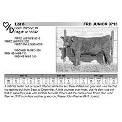 FRD JUNIOR 9713