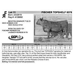 FISCHER TOPSHELF 9378