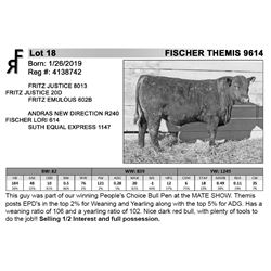 FISCHER THEMIS 9614