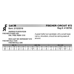 FISCHER CIRCUIT 972
