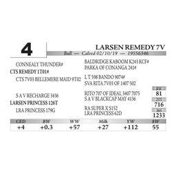 Larsen Remedy 7V