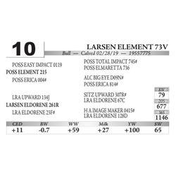 Larsen Element 73V