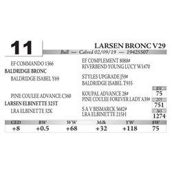 Larsen Bronc V29