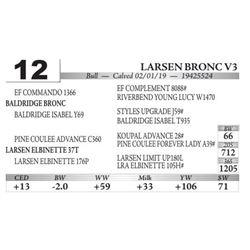 Larsen Bronc V3