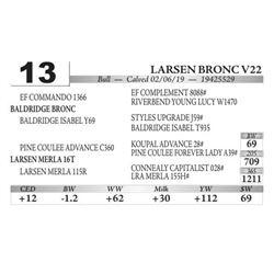Larsen Bronc V22