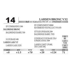 Larsen Bronc V32