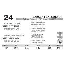 Larsen Feature 57V