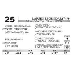 Larsen Legendary V79