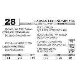 Larsen Legendary V46