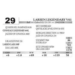 Larsen Legendary V61