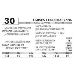 Larsen Legendary V96