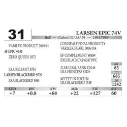 Larsen Epic 74V
