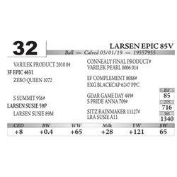 Larsen Epic 85V