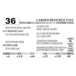 Larsen Reource V215