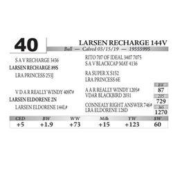 Larsen Recharge 144V