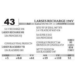 Larses Recharge 194V