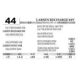 Larsen Recharge 84V