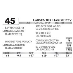 Larsen Recharge 173V