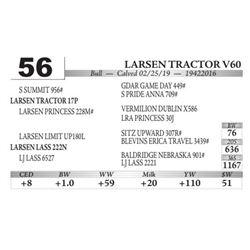 Larsen Tractor V60