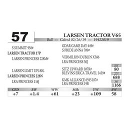 Larsen Tractor V65