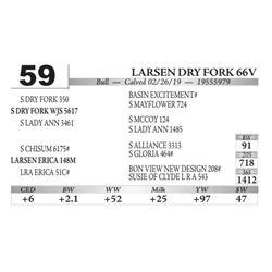 Larsen DRY Fork 66V