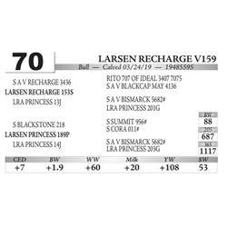 Larsen Recharge V159