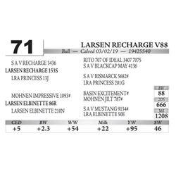Larsen Recharge V88