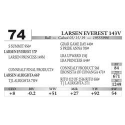 Larsen Everest 143V