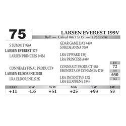 Larsen Everest 199V