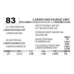 Larsen Recharge 190V