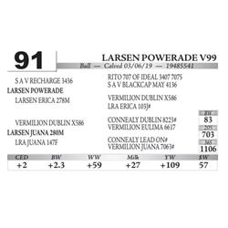 Larsen Powerade V99