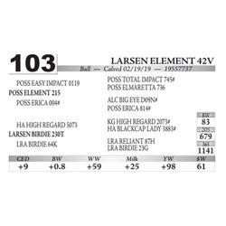 Larsen Element 42V