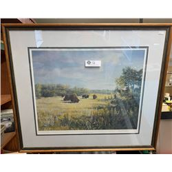 Large Framed Picture. Bison at Audy Lake Manitoba. Signed by Margaret Queening.
